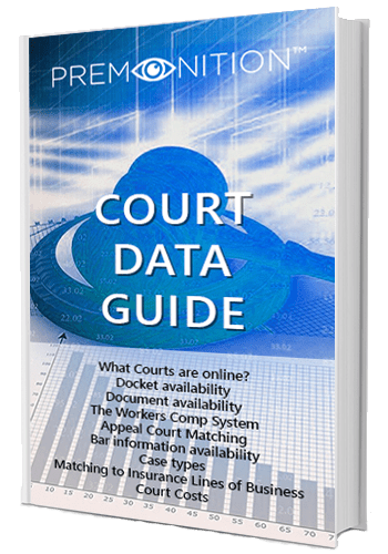 Court Data brochure